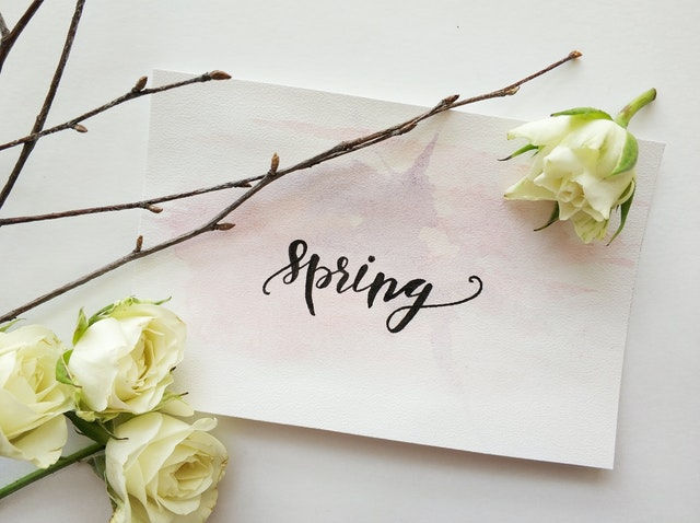 note on white paper reading spring in script on table with white roses scattered around
